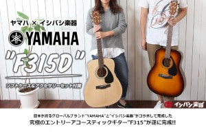80-f315d-set2_s1